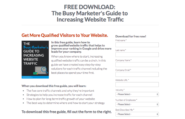 Landing_Page_Example_7-223242-edited