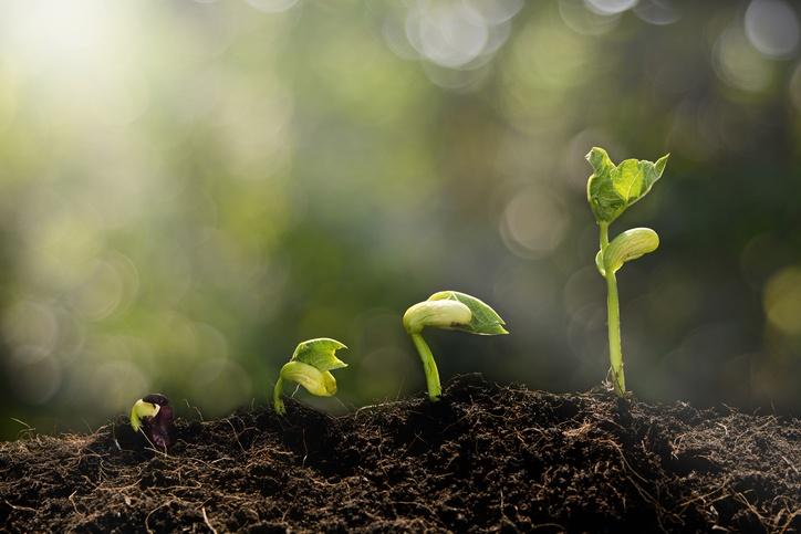 4 Ways to Nurture Marketing Qualified Leads into Sales Qualified Leads.jpg