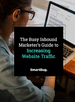 Busy Marketer's Guide to Increasing Website Traffic PP