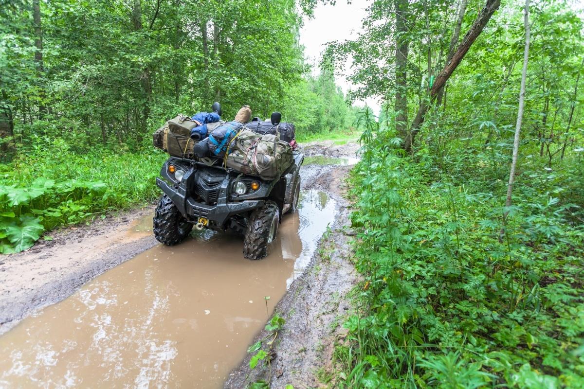 ATV-in-jungle-981421-edited.jpg