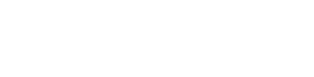 black swan logo all white