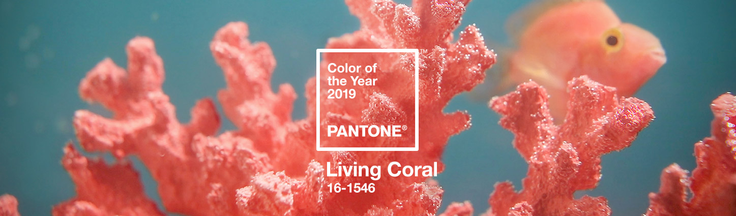 Pantone's 2019 Color of the Year - Living Coral