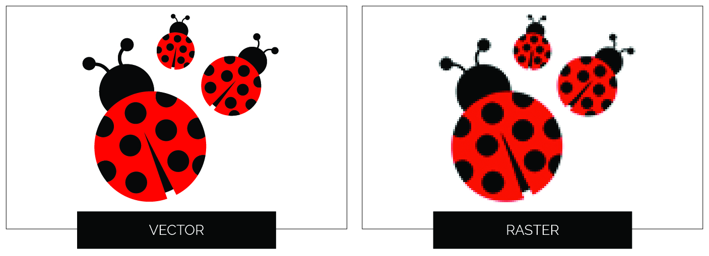 vector-file-image-examples