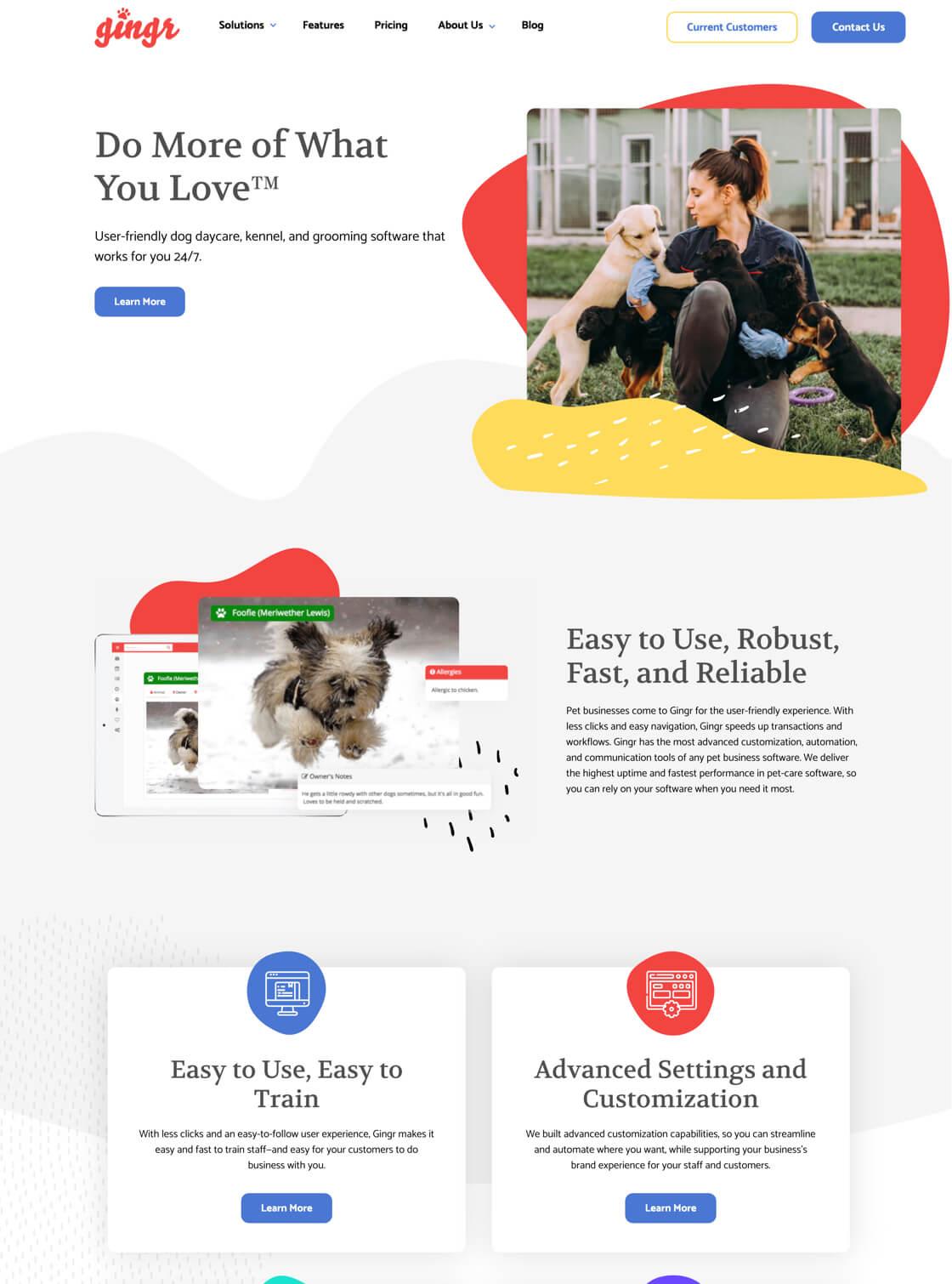 Gingr Website on Desktop